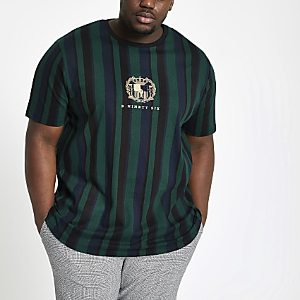 Big and Tall green stripe muscle fit T-shirt