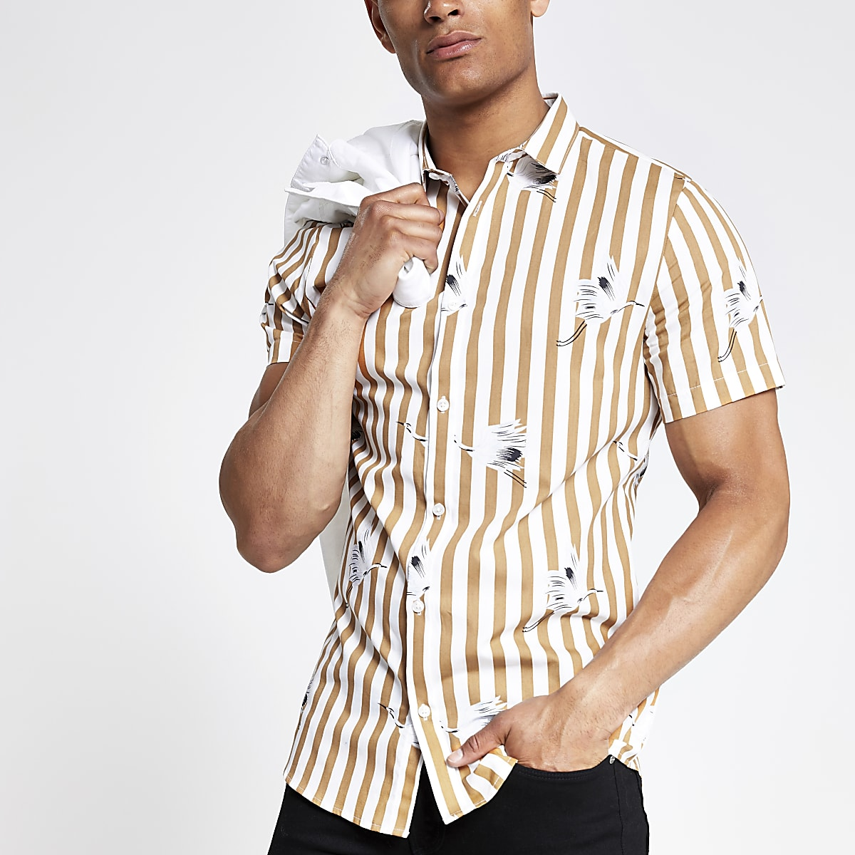 Ecru stripe slim fit short sleeve shirt