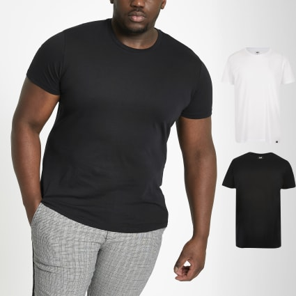 Lee Big and Tall multi T-shirt 2 pack