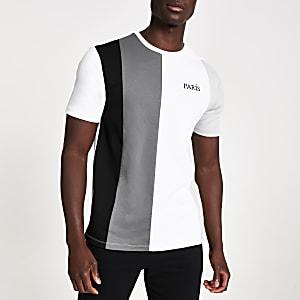 Grijs slim-fit T-shirt met kleurvlakken en Paris-print