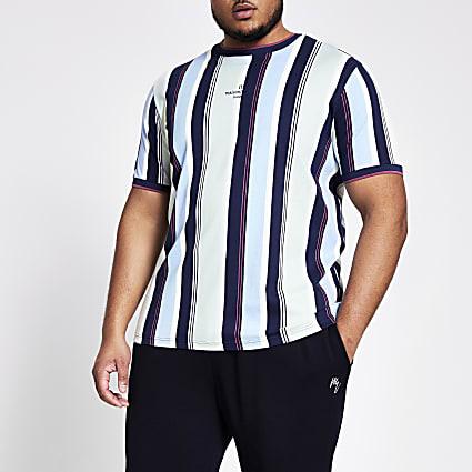 Big and Tall blue stripe slim fit T-shirt