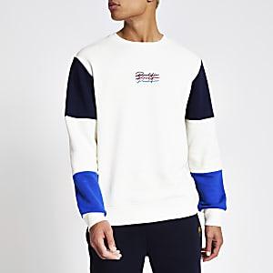 Prolific - Kiezelkleurige sweater met kleurvlakken