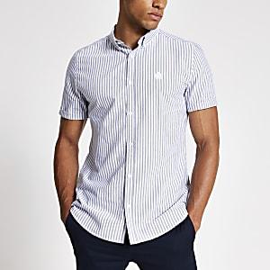 Grijs gestreept smal Oxfordoverhemd met korte mouwen