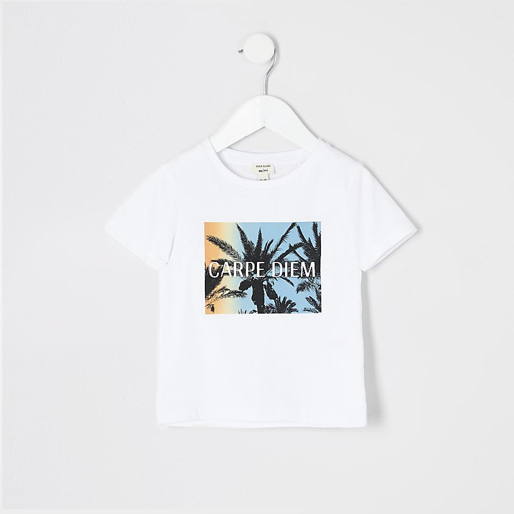 Mini boys white palm print T-shirt