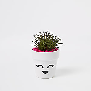 White face eyelashes artificial succulent pot