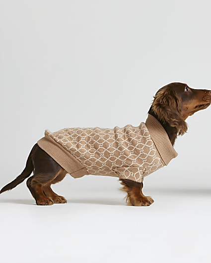 Beige RI Dog monogram print jumper