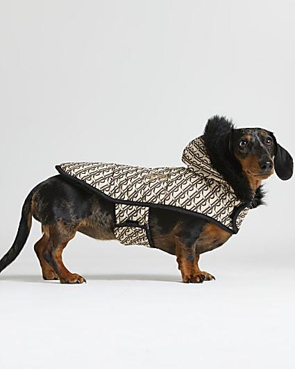Beige RI Dog monogram print puffer coat