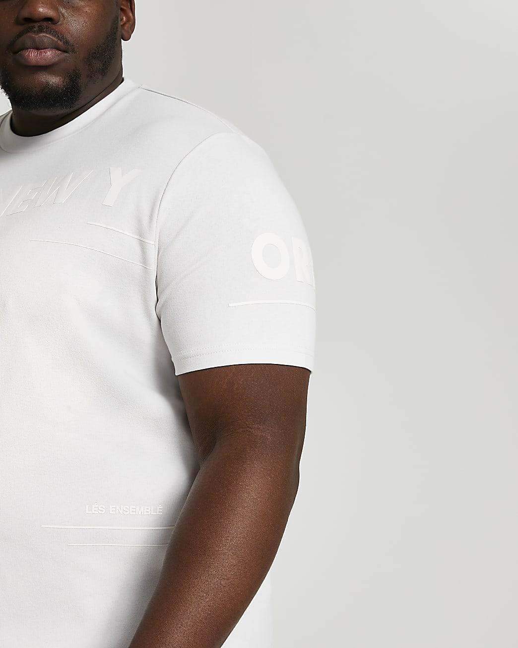 Big & Tall grey slim fit graphic t-shirt