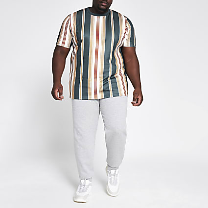 Big and Tall navy stripe slim fit T-shirt