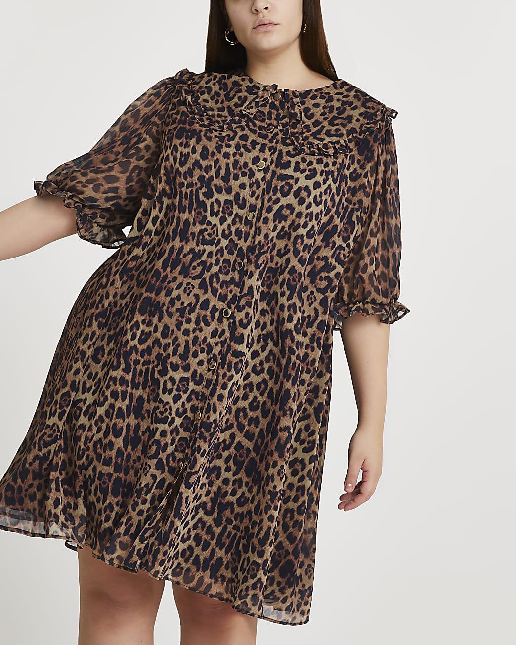 Black collar animal print shift dress