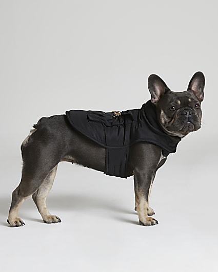 Black RI Dog coat with backpack