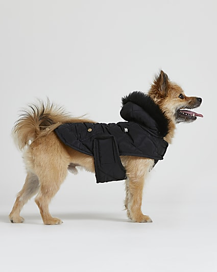 Black RI Dog quilted puffer coat