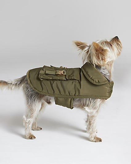 Khaki RI Dog coat with backpack