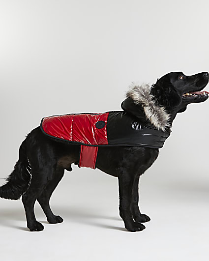 Red RI Dog puffer coat